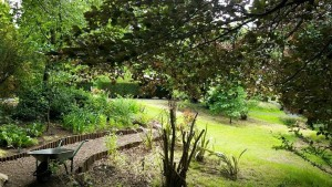 Duddingston Dr Neil's gardens - Venue-121 Edinburgh Fringe